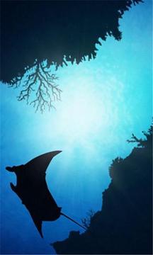 深海生物动态壁纸
