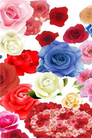 首页 游戏库 手机美化 唯美玫瑰花动态壁纸