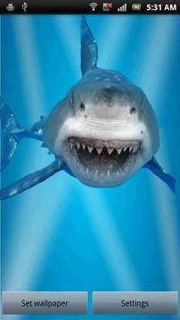 憤怒的鯊魚裂縫屏幕