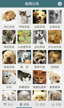 Free宠物医生