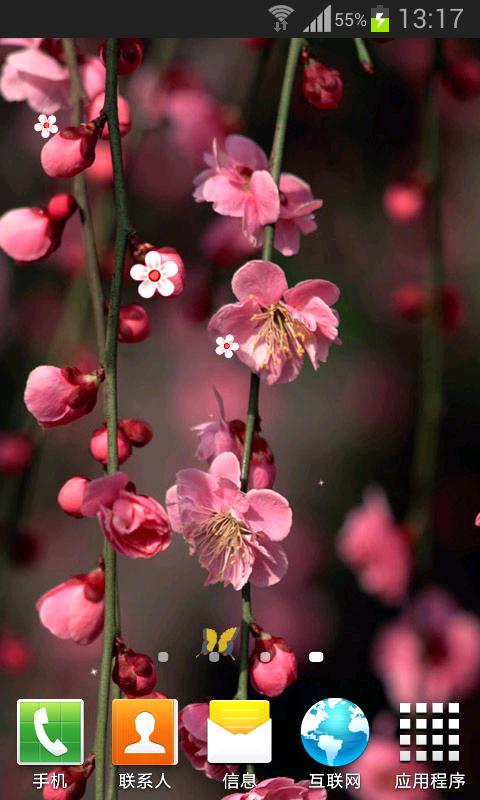 这是一款高清花朵动态壁纸,高清风景美图,完全不一样的视觉冲击.