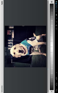 Photo Effects Plugin by Aviary