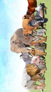 动物为幼儿及婴儿