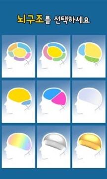 大脑结构测试