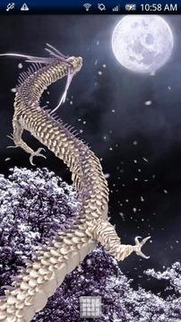 Black Dragon-DRAGON PJ Free