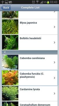 Plantas Acuario Free