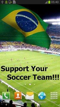 3D巴西国旗