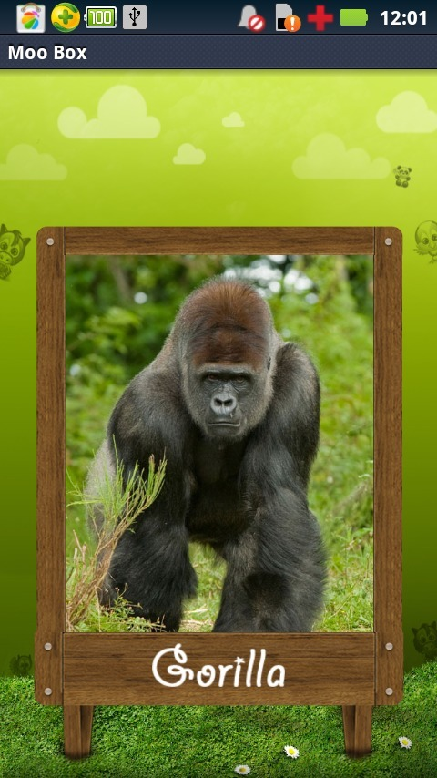 屏幕上的各式动物的图片