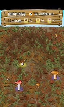 毒蘑菇的采集