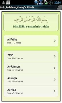 Yasin Audio (Ali Al-Hudhaify)