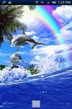 Dolphin-Champion!Free