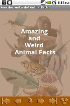 Amazing and Weird Animal Facts