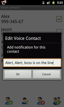 Voice Caller ID + SMS Lite