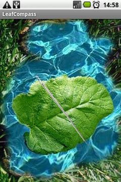 Leaf Compass
