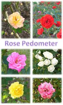 Flower Pedometer 3