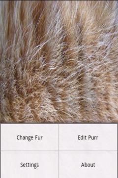 Fur Simulation