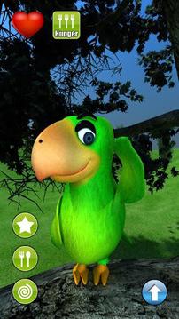 Talking Popo Parrot