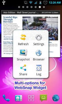 WebSnap网站控件