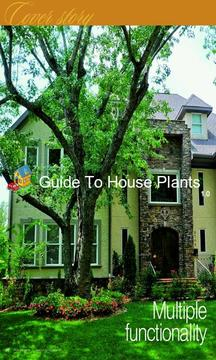 Guide To House Plants