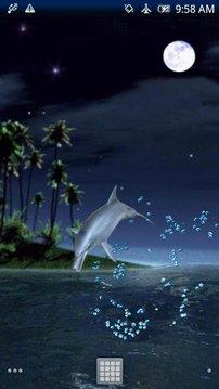 Dolphin Fly Free