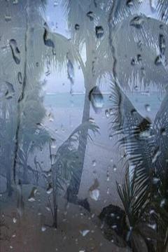 海滩有雨的声音