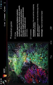 数码相框 DayFrame
