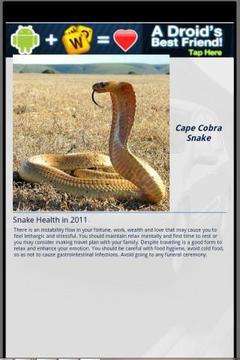 Snake & Me