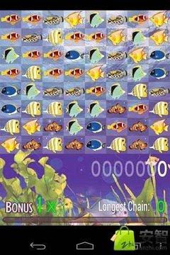 Colorful Fish,七彩鱼对对...