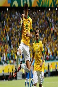 2014年巴西足球比赛