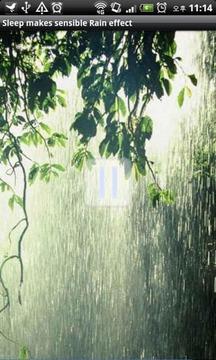 显有雨的影响经典