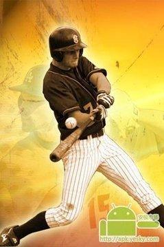 职业棒球大联盟