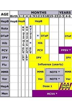 Shots 2012 CDC Immunizations