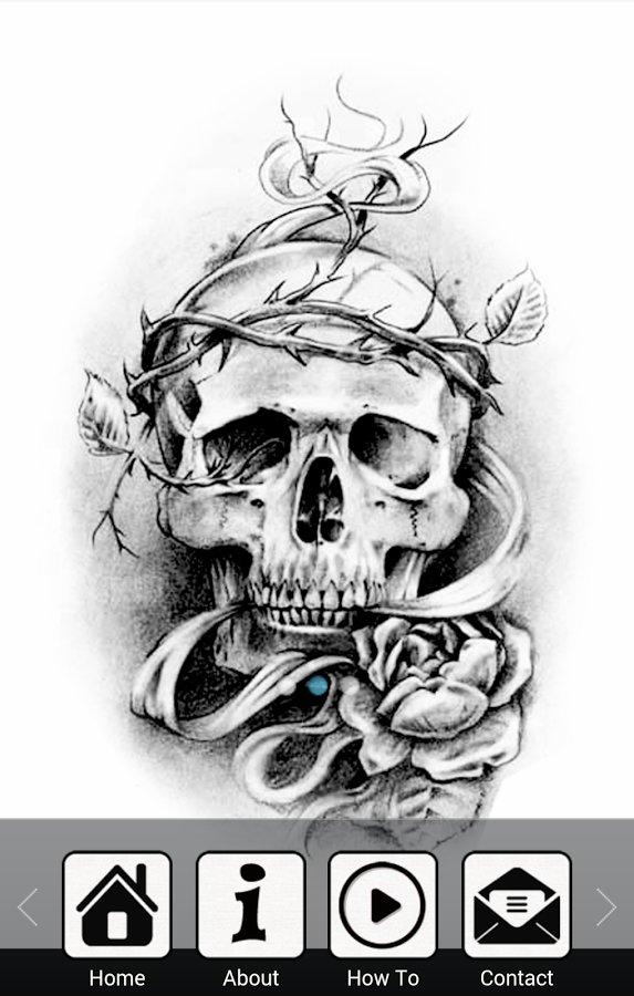 绘制tatto头骨