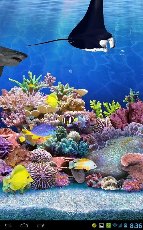 海底水族馆3d动态壁纸图片