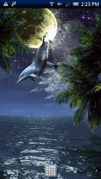 Dolphin-RYUKYU HEALING Free