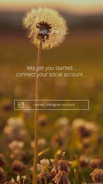 Chibee Social Exchange