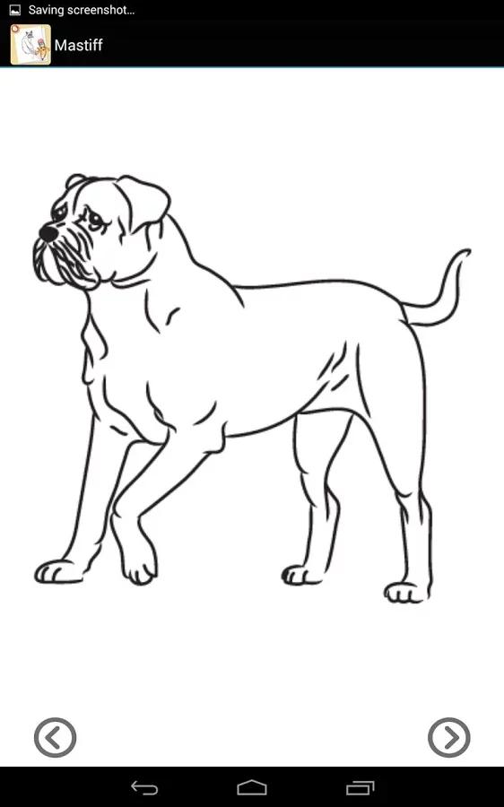 如何画猫简笔画步骤