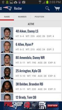 New England Patriots 2012