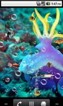 Nature sea Live Wallpaper
