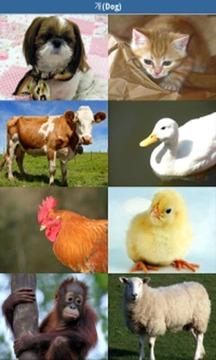 동물소리 (우리 아가를 위한/Animal Sound)