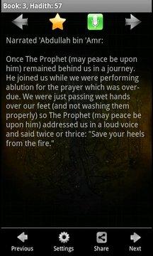 Sahih Al Bukhari (Free)