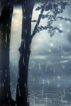 Wonderful Rain Live Wallpaper