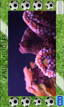 章鱼保罗预测2012