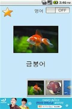 幼儿英语和鱼