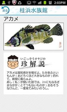 i 水族馆 桂浜・足折
