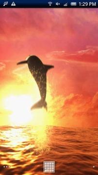 Sunrise Ocean Free