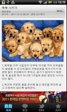 [토크] 애견관리