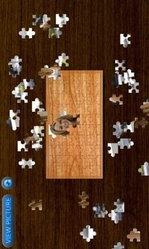 Miley Cyrus Jigsaw HD Vol.2