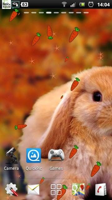 分组可爱兔子图案