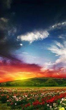 Nature HD Live Wallpaper